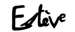 maurice esteve, Galerie d'art Cannes, Galerie Hurtebize, achat tableau art, art moderne, modern art, art abstrait, abstraction lyrique, peintures, tableau