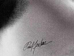 Signature de l'artiste Paul Jenkins